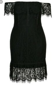 city chic xs lace dress devotion