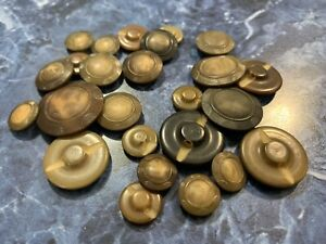 Stunning 25 vintage matching embossed vegetable ivory, tagua nut button Tan