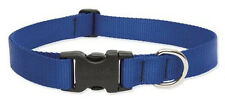 "Lupine Dog Collar 1"" BLUE 12"" - 20"" New Solid Royal Blue Made in USA"