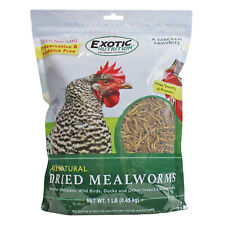 Dried Mealworms 1 lb. - High Protein Insects - Sugar Glider, Chicken, Wild Bird