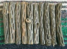 "CHOLLA WOOD 10 PCS 6""L Organic Untreated for Aquarium Decoration Crafts Chews"