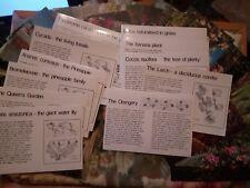 44 CARDS KEW ROYAL BOTANIC GARDEN 1970s ORIGINAL PAPER BAG ORCHIDS/PLANTS/GARDEN
