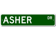 ASHER Street Sign - Personalized Last Name Sign