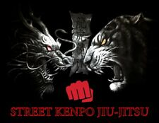 Kenpo Karate/Taekwondo/Kempo/Ka jukenbo/Jujitsu/Hapkido/Kr av Maga/Jeet Kune Do
