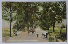THE AVENUE TOOTING BEC COMMON WANDSWORTH SOUTH LONDON RP POSTCARD 1905
