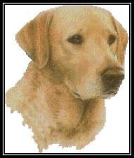 Golden Labrador - Cross Stitch Chart/Pattern/Design/XStitch