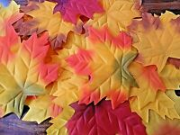 50 SUPER SIZE 12 CM/ QUALITY SILK MAPLE/AUTUMN fall LEAVES / DECOR/CRAFT/wedding
