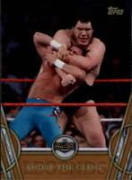 2018 Topps Legends of WWE Wrestling Bronze Singles (Pick Your Cards)