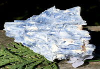 179g  HUGE! Natural Blue Kyanite Mineral Crystal Specimen AUSTRIA Reiki Charged