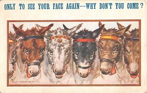 1923 Comic Bamforth PC of Line of Donkeys' Faces by D. Tempest-To See Your Face