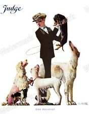Vintage JudgeMagazine Reprint Boy and his many Dogs Dachshund, Afghan.....