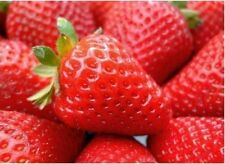 Red 100pcs Bag Climbing Strawberry Four Season Fruits Seeds DIY Home & Garden