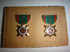 Pair Of Vietnam War ARVN DAN VY BOI TINH Civilian Service Mini Medals