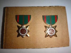 Paire De Vietnam Guerre Arvn Dan Vy Boi Tinh Civil Service Mini Médailles