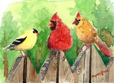 ACEO Limited Edition -A meeting, Cardinals & goldfinch,Art print of watercolor