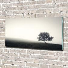 Glas-Bild Wandbilder Druck auf Glas 140x70 Deko Landschaften Einsamer Baum