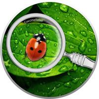 2020 Cameroon Secret Garden Ladybug 1/2 oz .999 Silver Proof Coin - Mintage 300