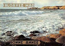 BR5423 Breizh figure de proue fendamt l ocean  france