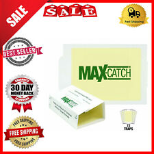 New Catchmaster Pest Glue Traps 72 Pack White Catch Mice Spiders Snakes Insect