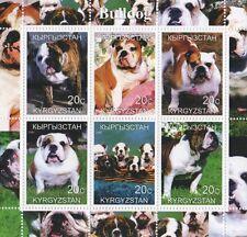 Bulldog cane Animale Pet e i cuccioli KYRGYZSTAN 2000 Gomma integra, non linguellato FRANCOBOLLO SHEETLET