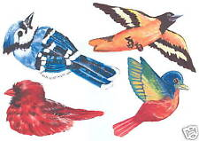 Wild Birds Creative Decorating Wall Transfer Art Decor Tatouage