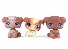 Lot 3 Littlest Pet Shop 37 38 39 Poodle Dog Chien / LPS Hasbro