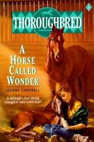 Thoroughbred #01 A Horse Called Wonder by Campbell, Joanna