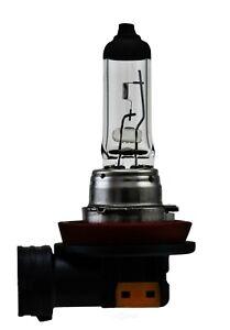 Fog Light Bulb-2 Door Hella H8SB
