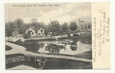 Postcard Paris Michigan MI State Fish Hatchery Antique  1907 Windmill Horse