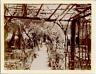 Algérie, Laghouat, Un Jardin d'officier  Vintage print.  Tirage citrate