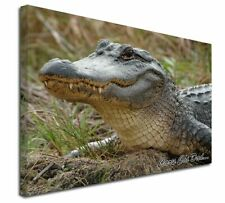 More details for welsh crocodile 'caru chi dad' x-large 30