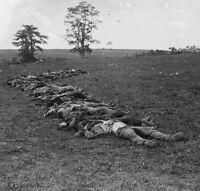 Confederate Rebel Dead Antietam Sharpsburg - 8x10 Civil War Photo