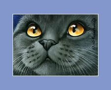British Shorthair Blue Cat ACEO Print Orange Eyes By I Garmashova