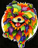 PARTY POMERANIAN 8X10 DOG  print by Artist Sherry Shipley