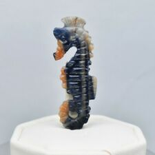 17.83ct Sea Horse Carving Into A Life Like Natural Unheated Bi-Color Sapphire