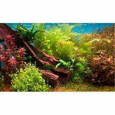 Fresh Water 3D Aquarium Background - 24 in. x 16 in. - 20 gal - LB4 - Penn Plax