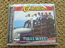 challengers wave surf music cd surfing surfboard longboard richard delvy band