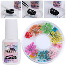 Mixed Dried Flower 3D Nail Art Decoration 7g Nail Art Glue Fast-dry Manicure Kit
