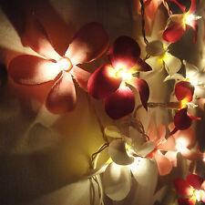 35 Globe Flower Frangipani Fairy Lights String 3.5M PARTY,PATIO,WEDDING