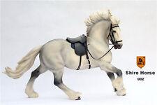 MR.Z SH002 Type 1/6 Scale British Shire Horse Model W Harness F 12'' Figure Body