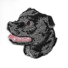 "2"" x 2 1/8"" Staffordshire Bull Terrier Portrait Dog Breed Embroidery Patch"