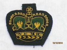 No. 1 DRESS ABZ. Warrant Officer 2, Royal Green Jackets