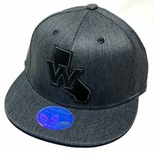 Golden State Warriors ST Adidas NBA W Gray Blue Fitmax Flex Fitted Hat Cap L/XL