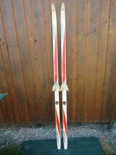 """GREAT Cross Country Skis 73"""" Long FISCHER 190 cm Skis READY TO USE"""