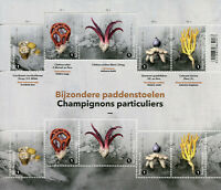 Belgium Special Mushrooms Stamps 2020 MNH Fungi Mushroom Nature 10v M/S