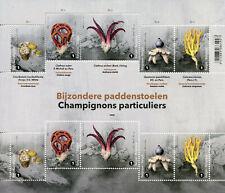 Belgium Special Mushrooms Stamps 2020 MNH Fungi Mushroom Nature 10v M/S
