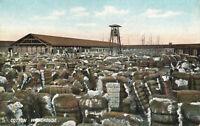 Postcard Cotton Warehouse