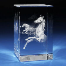 3D Laser Crystal Glass Etched Engraving Stand Horses Animals Landscape S