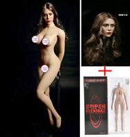 "12"" TBLeague PH Seamless Large Bust Body 1/6 Female Head sculpt  Action Figure"