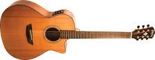 Washburn Woodline 100 Series | WLG110SWCEK Acoustic Guitar, Brand New !!